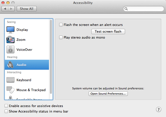 screenshot accessibility menu