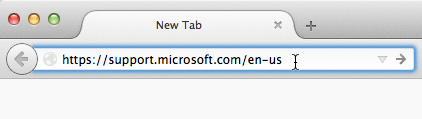 Screenshot of pasting URL into address bar