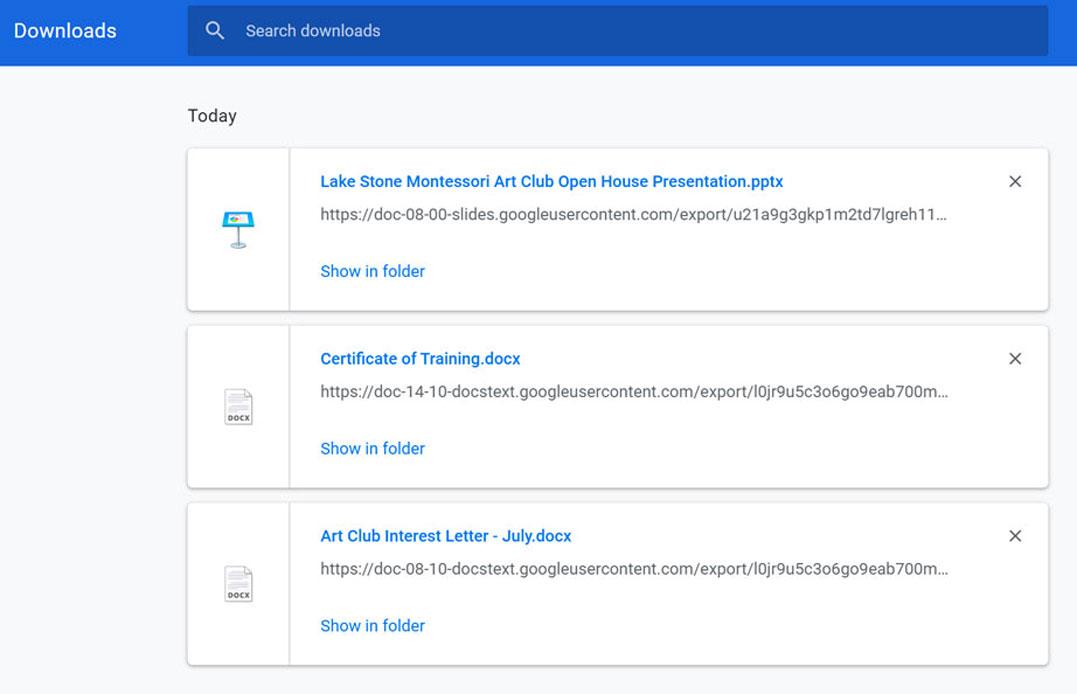 viewing a Google Chrome Downloads folder