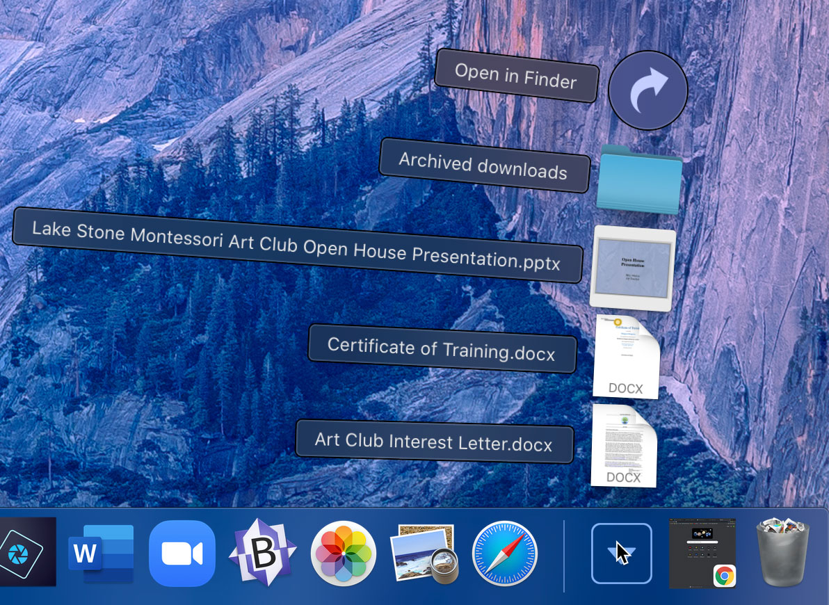 viewing downloads within Mac OS