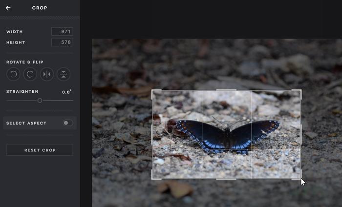 A screenshot of the Pixlr X Crop menu.