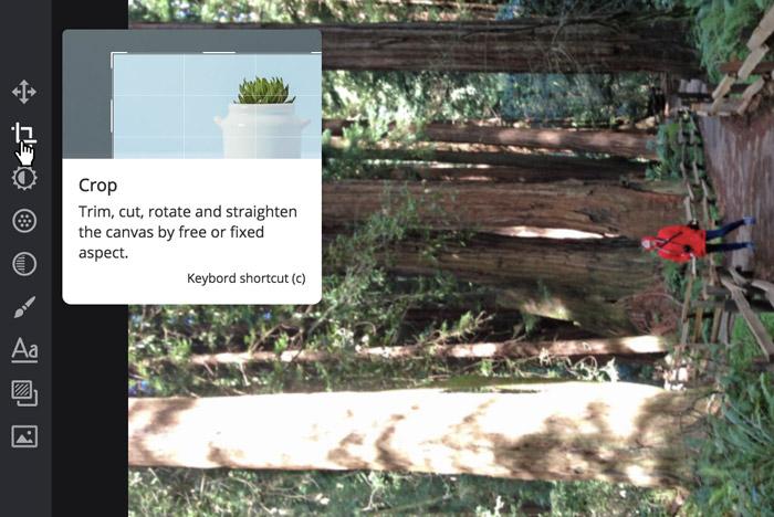A screenshot of a Pixlr X interface.