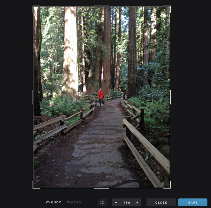 A screenshot of an image in Pixlr X.