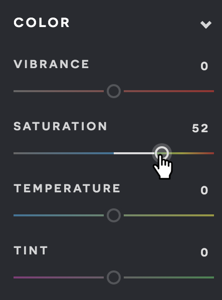 A screenshot of the Pixlr X adjust menu.