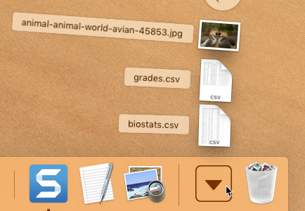 screenshot of finding files using the Downloads folder
