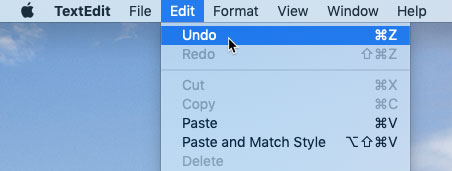 screenshot of selecting Undo from the Edit menu of an application