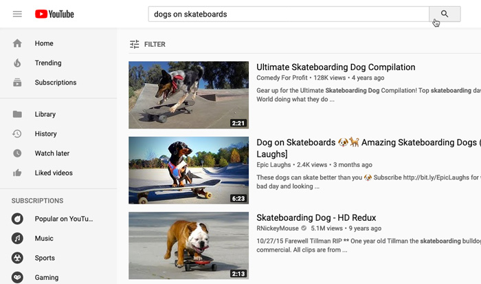 "screenshot of YouTube search results for ""dogs on skateboards"""