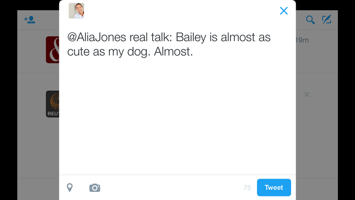 example of a tweet
