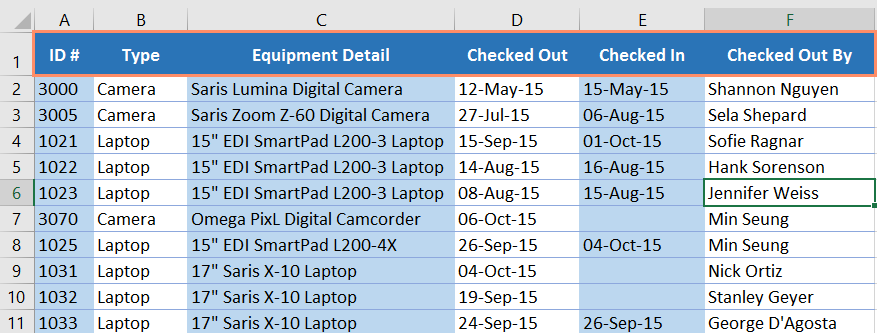 The header row in a spreadsheet