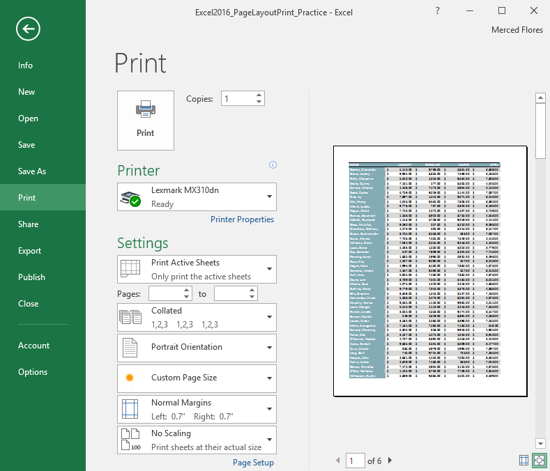Excel 2016 Page Layout And Printing