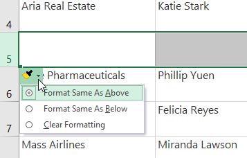 اختيار المزيد من إدراج خيارات التنسيق formatting options