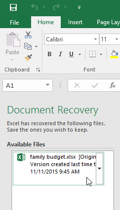The Document Recovery pane
