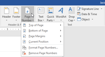 The Page Number command on the Insert tab.