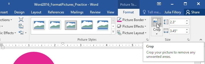 Word 2016 Formatting Pictures