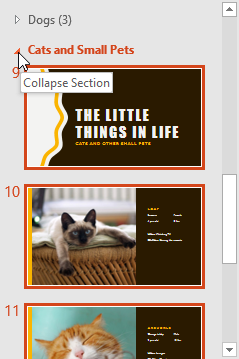 Collapsing a section - www.office.com/setup
