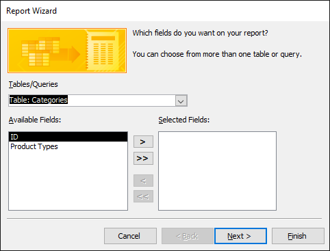 The Report Wizard dialog box