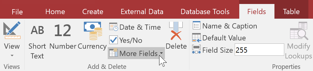 Clicking the More Fields drop-down command