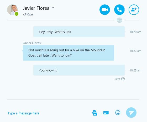 an IM conversation on Skype
