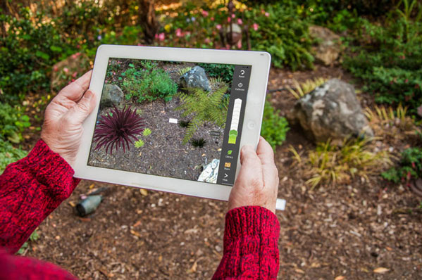 A person sees augmented reality through their iPad screen.