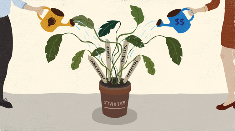 Watering plants to represent startups