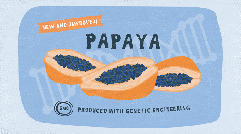 An advertisement for genetic modified papayas.