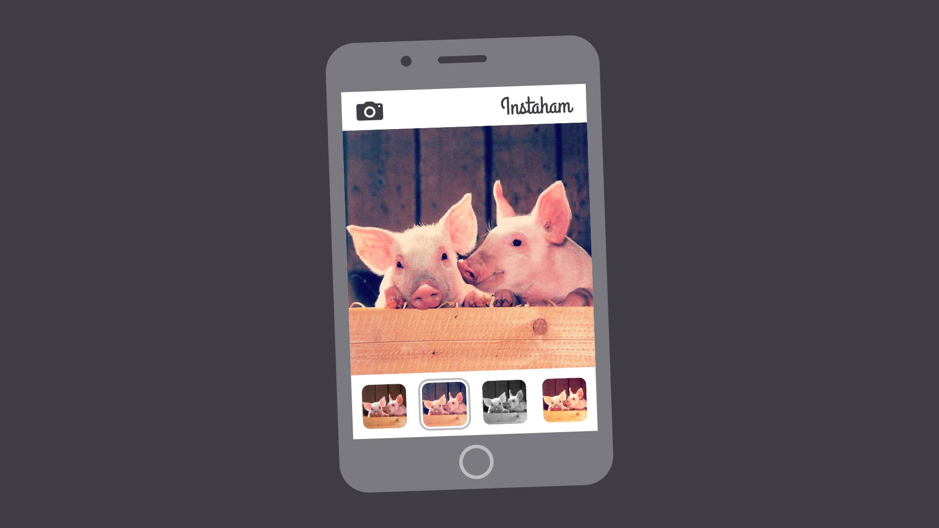 image filter app