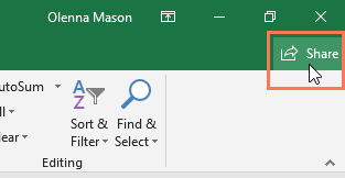 screenshot of the Share button in Microsoft Excel