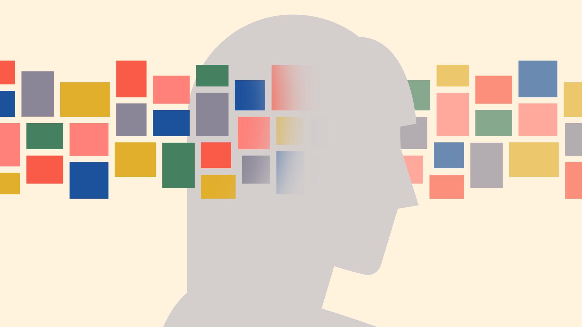 information flowing through brain