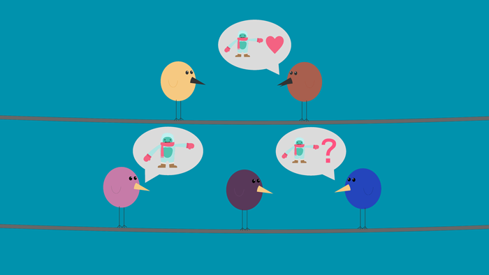 A group of birds exchange opinions and info.