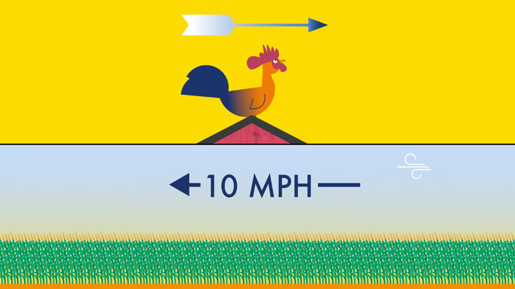 an illustration of a rooster facing east and the wind blowing west at 10mph