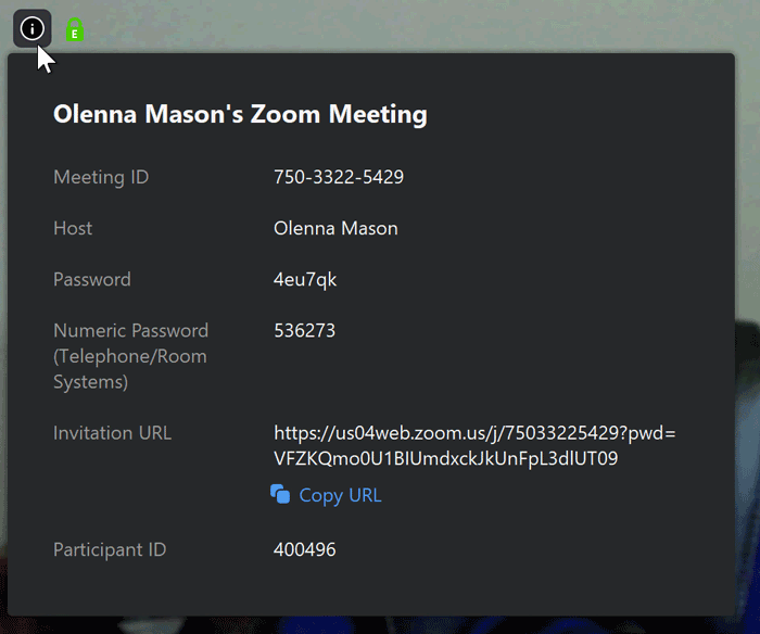 A screenshot of the meeting info box in the Zoom app.