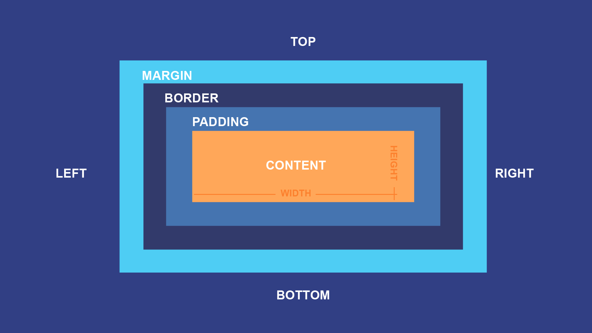 labeled diagram of box model, showing margins, borders, and padding