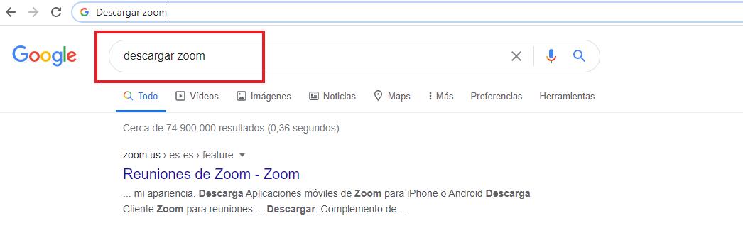 Descarga Zoom