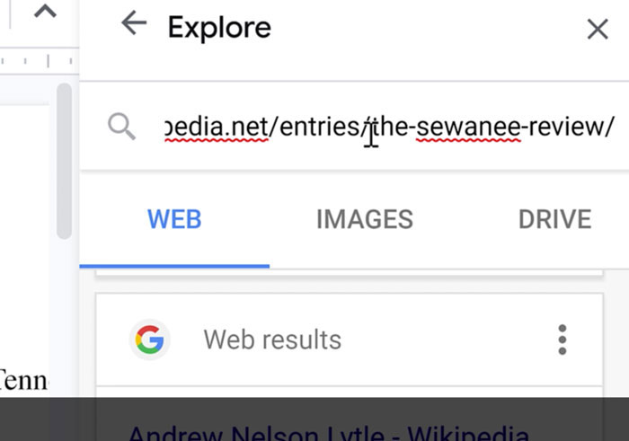 URL pasted into search bar