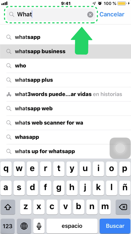 ¿Cómo aparece WhatsApp Business en la App Store?