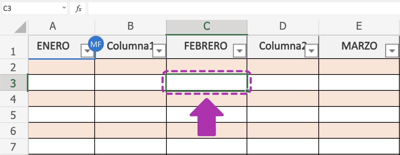 Cçomo escribir en las celdas de Excel 365