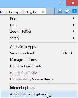 screenshot of Internet Explorer 11