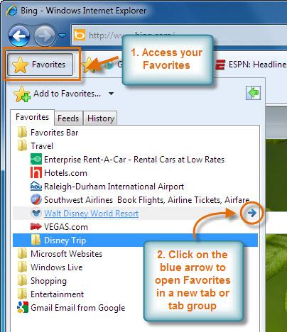 Screenshot of IE8