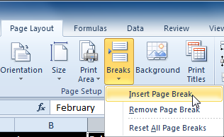 Selecting the Insert Page Break command