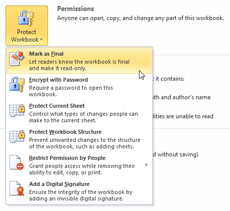 Selecting a Protect Workbook option