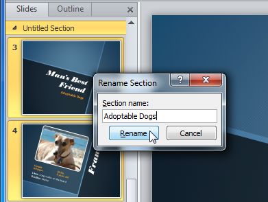 Rename Section dialog box
