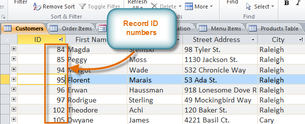Records and record ID numbers