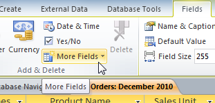 The More Fields drop-down command