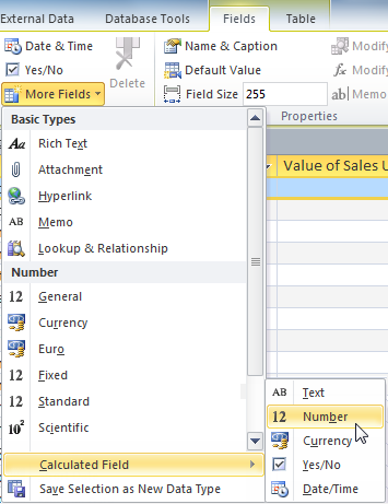 Selecting the calculated field type