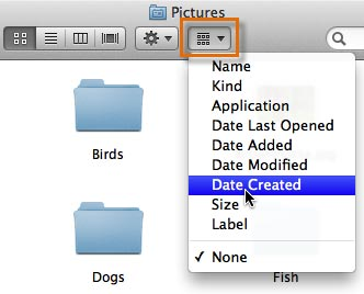 Arranging by Date Created