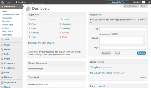 The WordPress dashboard, or interface