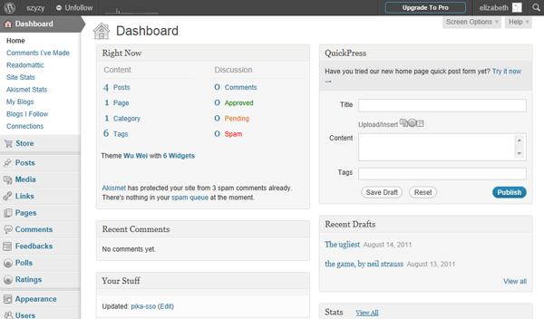 The WordPress dashboard, or interface