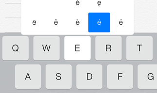 Screenshot of the iPad