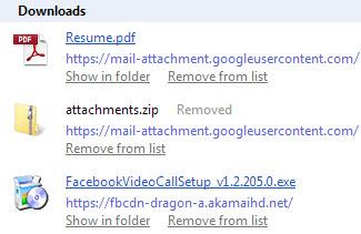 Screenshot of Google Chrome Downloads Folder