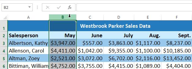 Screenshot of Excel 2013